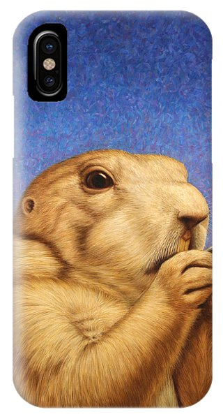 Dog iPhone X Case - Prairie Dog by James W Johnson