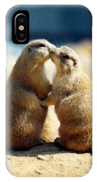 Prairie Dogs Kissing IPhone Case