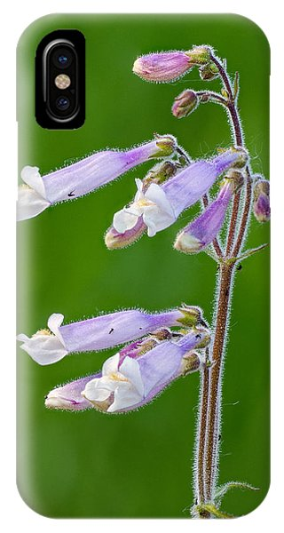 Prairie Penstamon IPhone Case