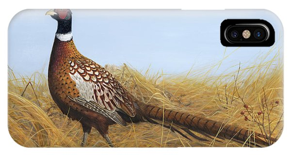 IPhone Case featuring the painting Prairie Splendor by Tammy Taylor