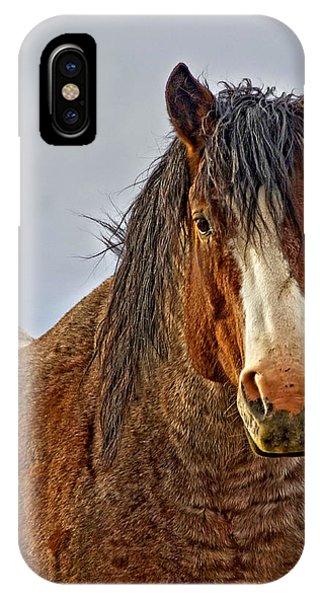 Winter's Edge IPhone Case