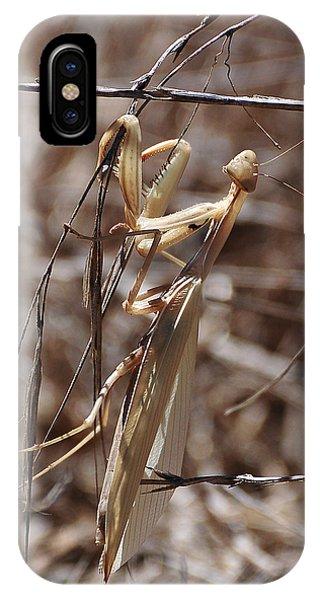 Praying Mantis Blending In IPhone Case