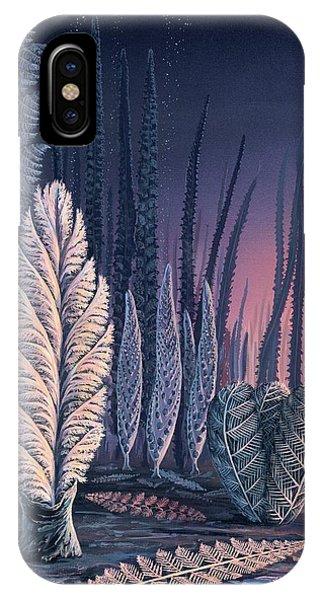 Alga iPhone X Case - Pre-cambrian Life Forms by Richard Bizley