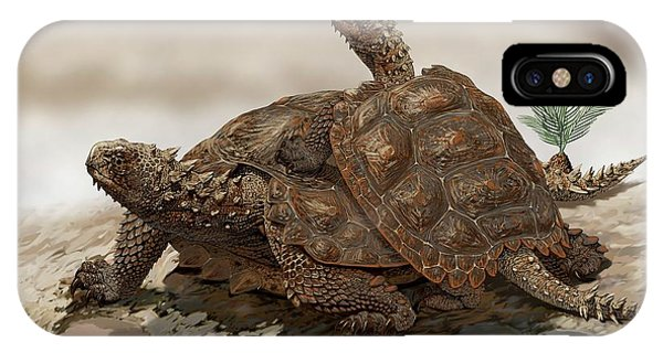 Prehistoric Turtles Phone Case by Jaime Chirinos/science Photo Library
