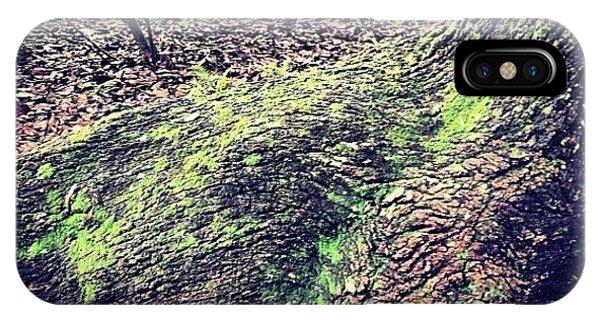 Tree iPhone Case - Preserve #mississippi #igersoflouisiana by Scott Pellegrin