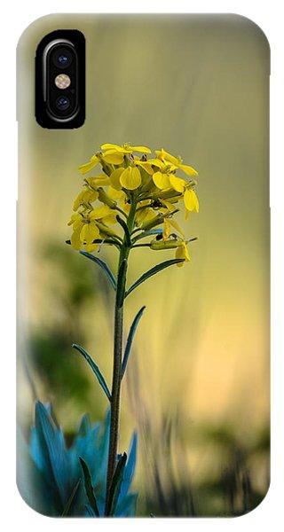 Pretty As A Wallflower IPhone Case