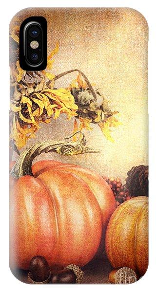Pretty Autumn Display IPhone Case