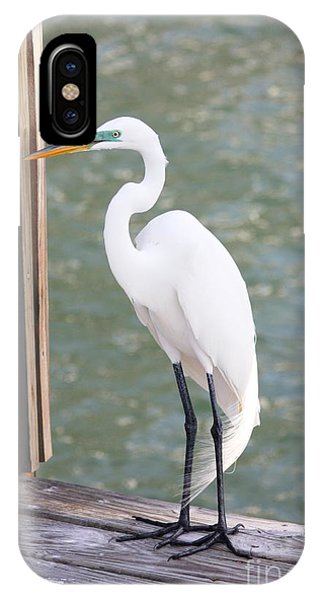 Pretty Great Egret IPhone Case