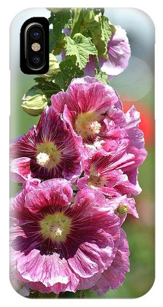 Pretty Hollyhock Flowers IPhone Case