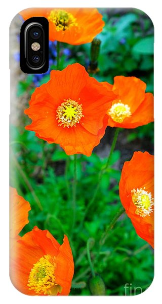 IPhone Case featuring the photograph Pretty In Orange by Jacqueline Athmann
