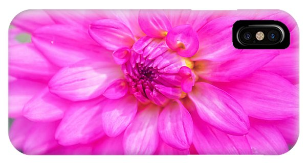 Pretty In Pink Dahlia IPhone Case