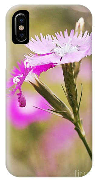 Pretty In Pink Phone Case by Pamela Gail Torres