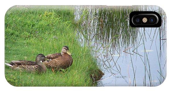 Mated Pair Of Ducks IPhone Case