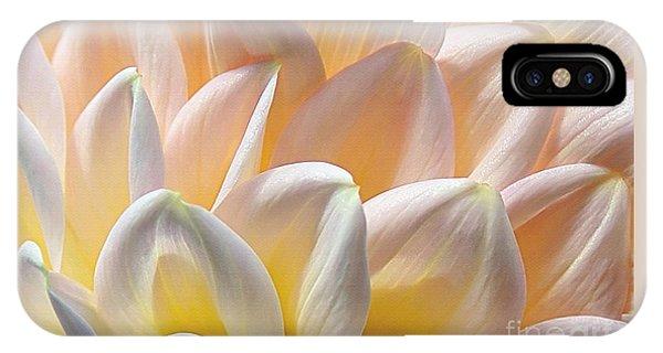 Pretty Pastel Petal Patterns IPhone Case