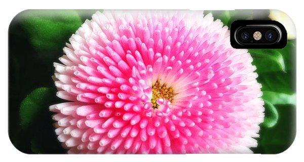 Green iPhone Case - Pretty Pink Flower by Matthias Hauser