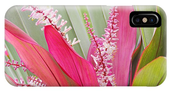 Pretty Pink In Key West IPhone Case