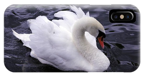 IPhone Case featuring the photograph Pretty Swan by Jeremy Hayden
