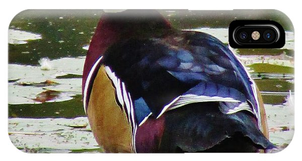 Pretty Wood Duck Phone Case by Thomas  McGuire