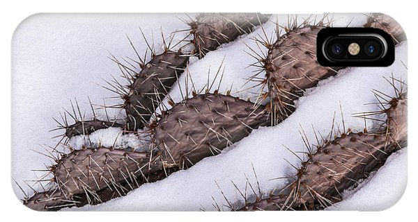 Prickly Pear On Ice IPhone Case
