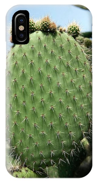 Prickly Pear (opuntia Ficus-indica) Phone Case by Pascal Goetgheluck/science Photo Library