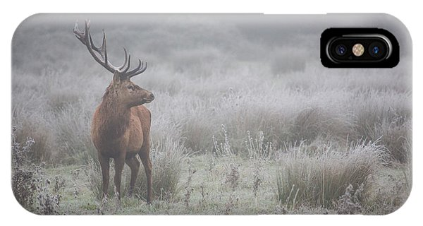 Stag iPhone Case - Prideful. Deer . by Aitor Badiola