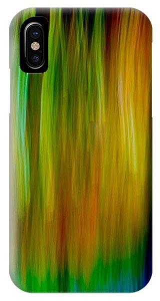 Primary Rainbow IPhone Case