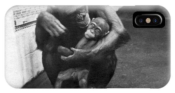 Behaviour iPhone Case - Primate Discipline by Underwood Archives