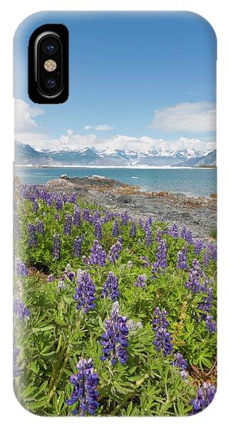 Glacier Bay iPhone Case - Prince William Sound, Alaska, Lupine by Hugh Rose