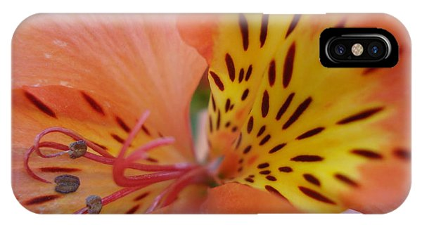 Princess Lily Phone Case by Ronine McIntyre