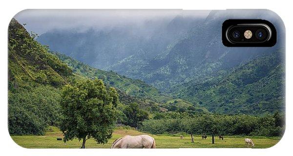 Pristine Pastures  IPhone Case