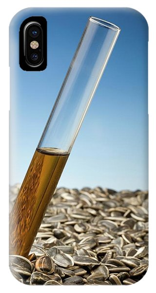 Sunflower Seeds iPhone Case - Producing Biofuels From Sunflowers by Steve Percival/science Photo Library