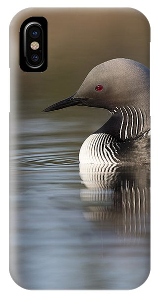 Profile Of A Pacific Loon IPhone Case