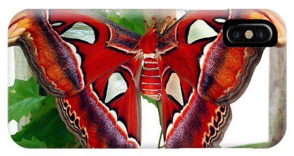 Promethea Moth IPhone Case