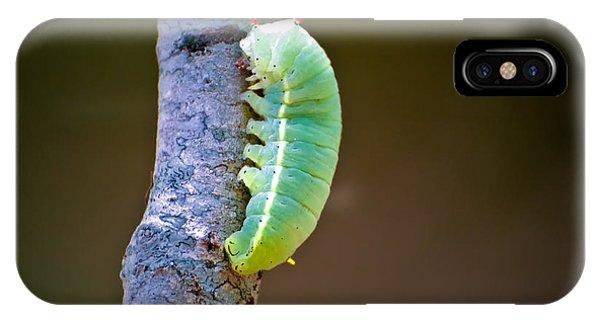 Promethea Moth Caterpillar IPhone Case