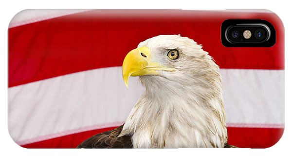 Proud iPhone Case - Proud Eagle by Rebecca Cozart