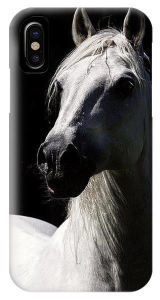 Proud Stallion IPhone Case