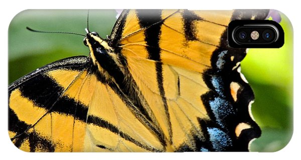 Proud Swallowtail IPhone Case