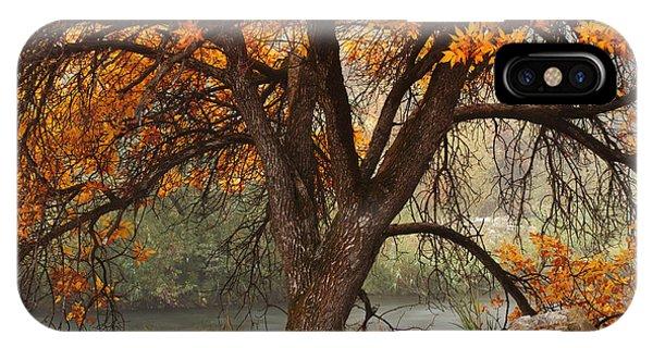 Provo Autumn #1 IPhone Case