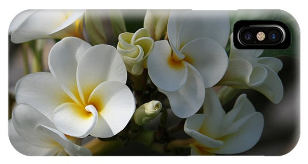 Pua Melia Na Puakea Onaona Tropical Plumeria IPhone Case