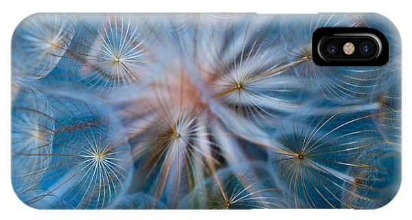 Puff-ball In Blue IPhone Case