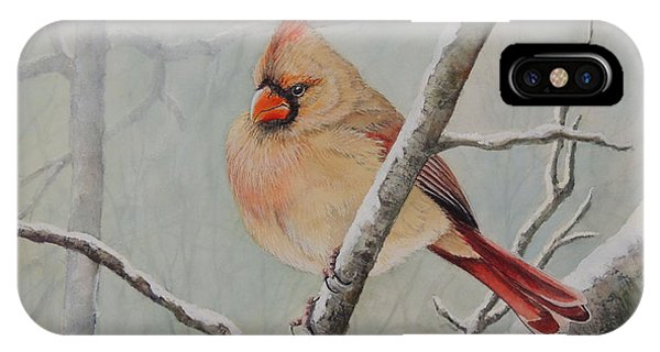 Puffed Up For Winters Wind IPhone Case