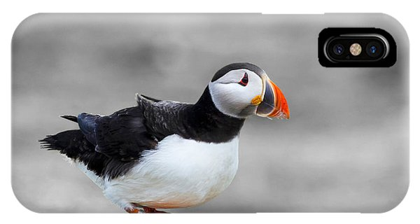 Puffin Bokeh IPhone Case