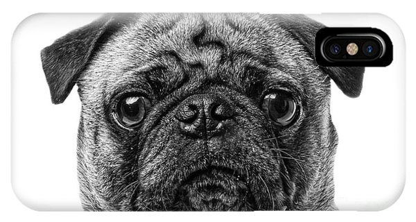 Pug iPhone Case - Pug Dog Black And White by Edward Fielding