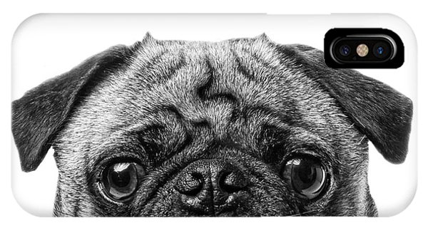 Pug iPhone X Case - Pug Dog Square Format by Edward Fielding