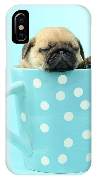 Pug iPhone X Case - Pug In A Cup by MGL Meiklejohn Graphics Licensing