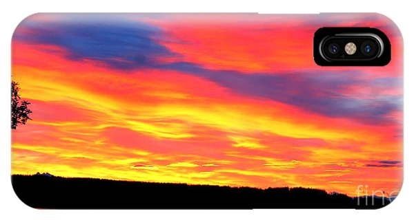 Puget Sound Colors IPhone Case
