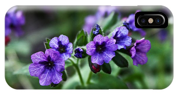 Pulmonaria IPhone Case