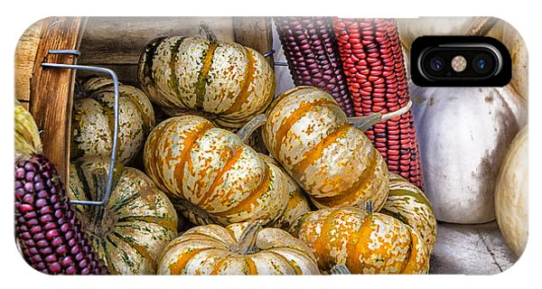 Pumpkin Basket IPhone Case