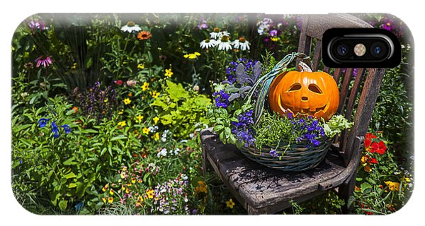 Fall Flowers iPhone Case - Pumpkin In Basket On Chair by Garry Gay