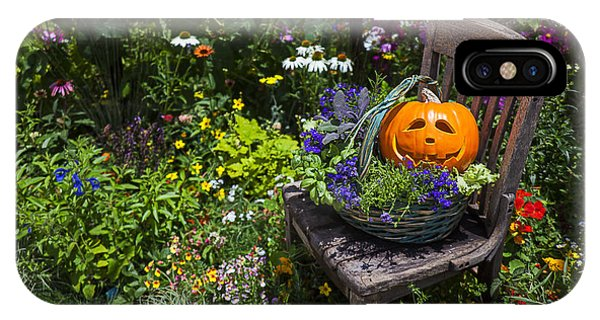 Pumpkin In Basket On Chair IPhone Case